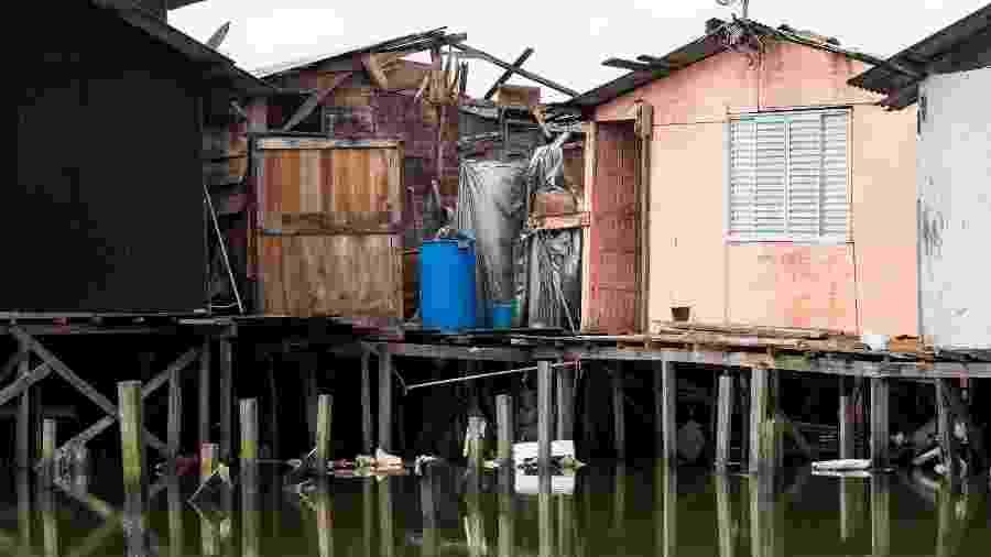 Dique da Vila Gilda, maior favela de palafitas em Santos (SP), onde moram ao menos 6 mil famílias - Flavio Moraes/UOL