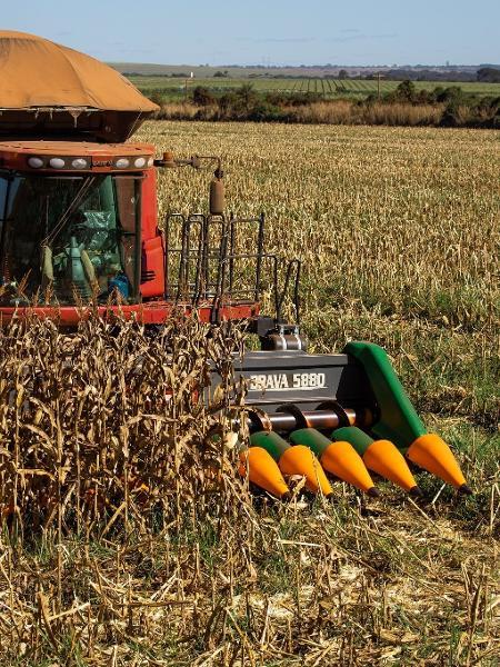Colheita de milho CNA agronegócio etanol agricultura - CNA