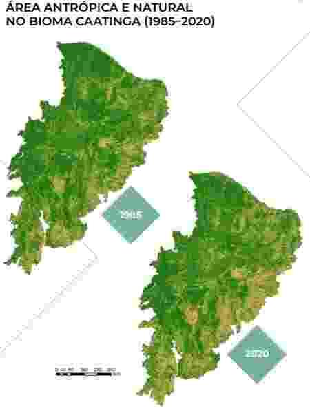 Mapa de áreas degradas cresceu em 35 anos - Reprodução/MapBiomas - Reprodução/MapBiomas