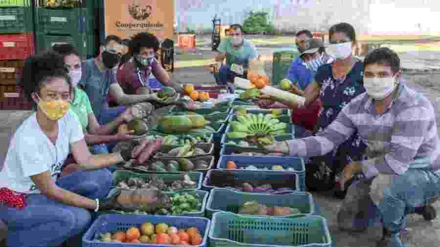 Uma cooperativa de comunidades quilombolas conseguiu reunir 10 toneladas de alimentos para doar a famílias pobres - Flávia Nascimento/ISA