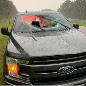 Reprodução/Walton County Fire Rescue, Florida/Facebook