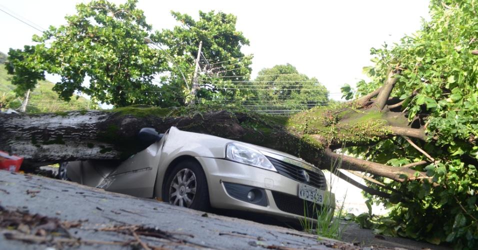 15.fev.2018 - Cariocas avaliam os estragos causados pela forte chuva e rajadas de vento no bairro de Sulacap na zona oeste do Rio. Em uma das ruas, árvore caiu sobre carro