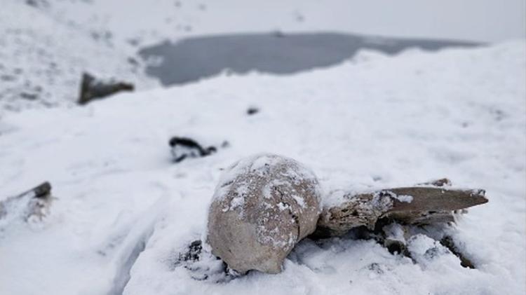 Esqueletos ficam boa parte do ano encobertos por neve e gelo - Getty Images - Getty Images