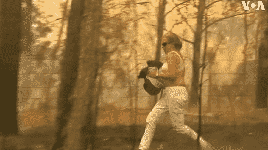 Mulher corre com coala nos braços após retirá-lo de uma área afetada por incêndios, no leste da Austrália - Reprodução