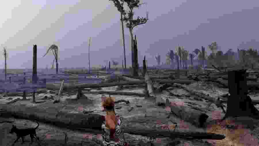 Congresso analisa medida provisória que pode aumentar o desmatamento na floresta amazônica - Reuters
