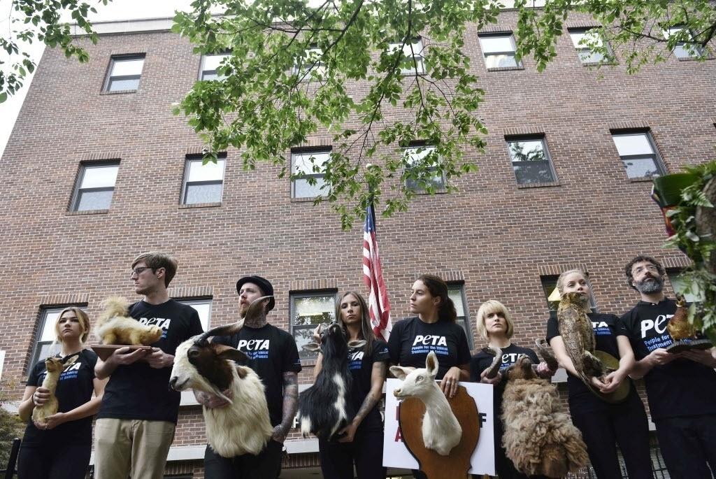 17.jun.2016 - Apoiadores do PETA (Pessoas pelo tratamento ético dos animais) usam animais empalhados para pedir o fim de todo o tipo de violência armada, incluindo a caça, em frente a Associação Nacional de Rifles, em Washington (EUA)