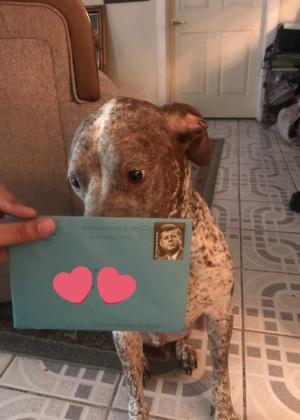 Todo ano, americano manda cartão de aniversário para cachorro que mora com sua ex