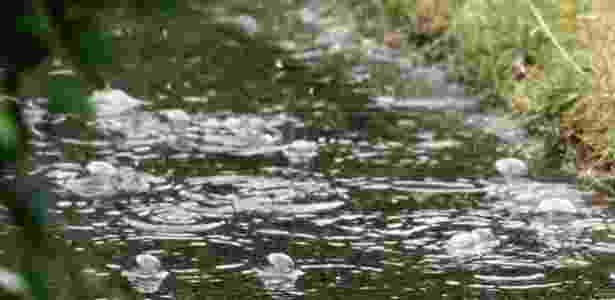 Chuva 2 - Suredo/Weather Watchers - Suredo/Weather Watchers