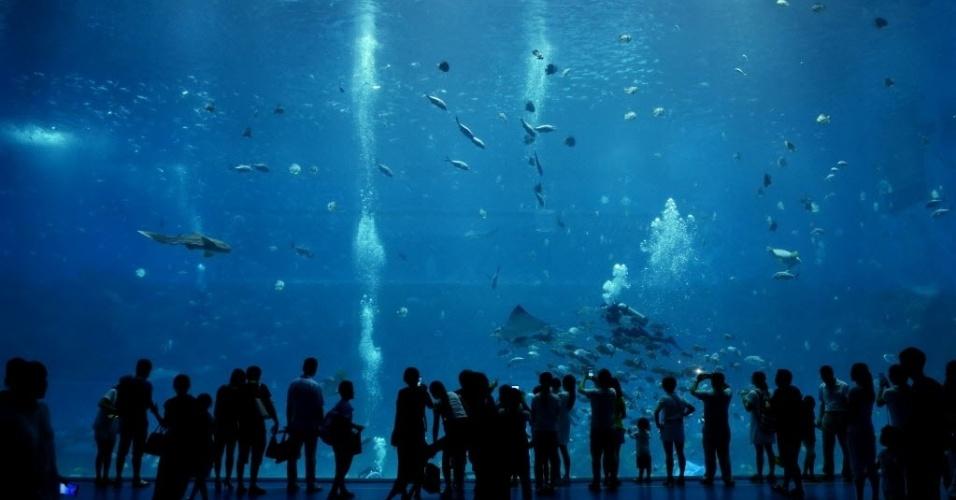 10.ago.2016 - Visitantes observam peixes em visitam um aquário em Nanchang, província de Jiangxi, na China. O local recebeu mais de 100 mil visitas em julho