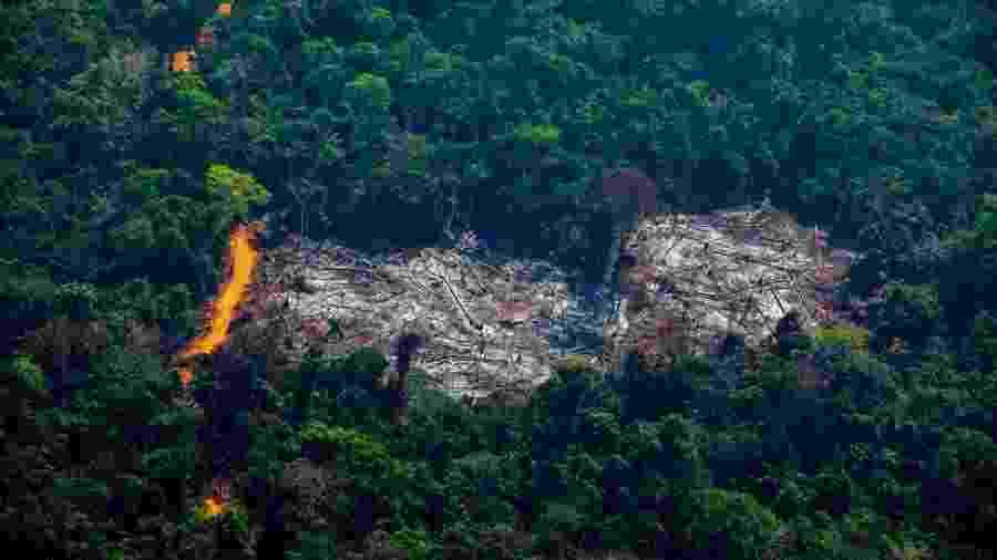 Área desmatada dentro da Terra Indígena Menkragnoti, no Pará; Estado foi responsável por 46,8% do desmatamento no país no último ano - Getty Images