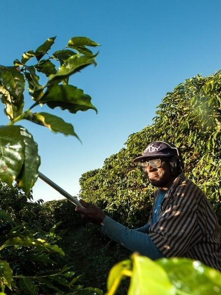 Máquina usada em colheita de café era cobrada dos trabalhadores - Lilo Clareto/Repórter Brasil