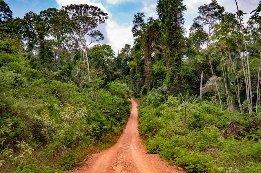Estrada de acesso à terra indígena Paquiçamba, no Pará, um dos territórios diretamente afetados pela construção da usina de Belo Monte