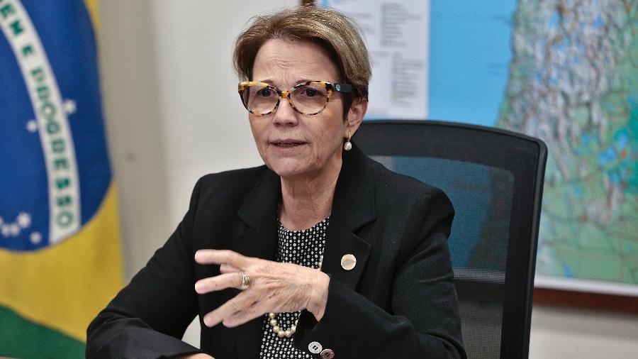 Brasil passa a ter 20% de bovinos livres de aftosa sem vacinação, diz ministra - Guilherme Martimon/Ministério da Agricultura