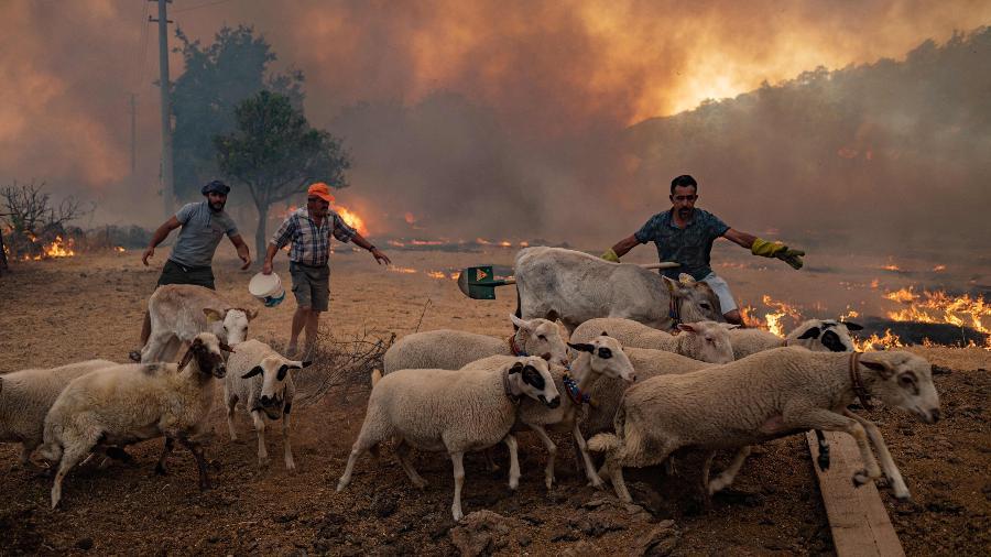 Grave incêndio atinge a Turquia -  Yasin AKGUL / AFP
