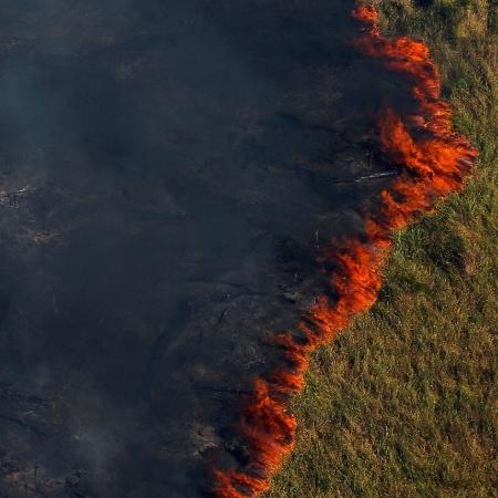 Bradesco, Itaú Unibanco e Santander aderiram ao grupo que busca consensos a fim de apontar caminhos para problemas que hoje ameaçam afetar negócios no Brasil, como o desmatamento da Amazônia - Bruno Kelly/Reuters