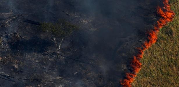 Fogo avança sobre floresta amazônica na região de Apuí, na floresta amazônica