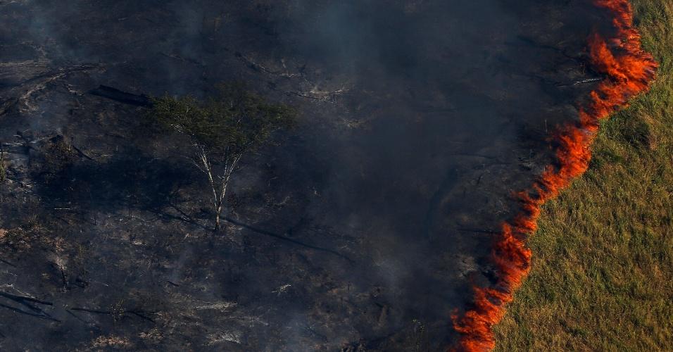 Fogo avança sobre floresta amazônica na região de Apuí, na fronteira de Amazonas com Rondônia