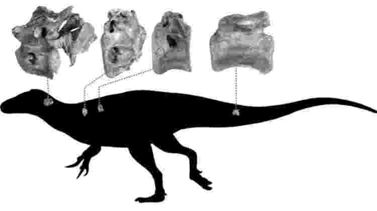Uma silhueta de um terópode indicando de onde eram os ossos - Darren Naish - Darren Naish