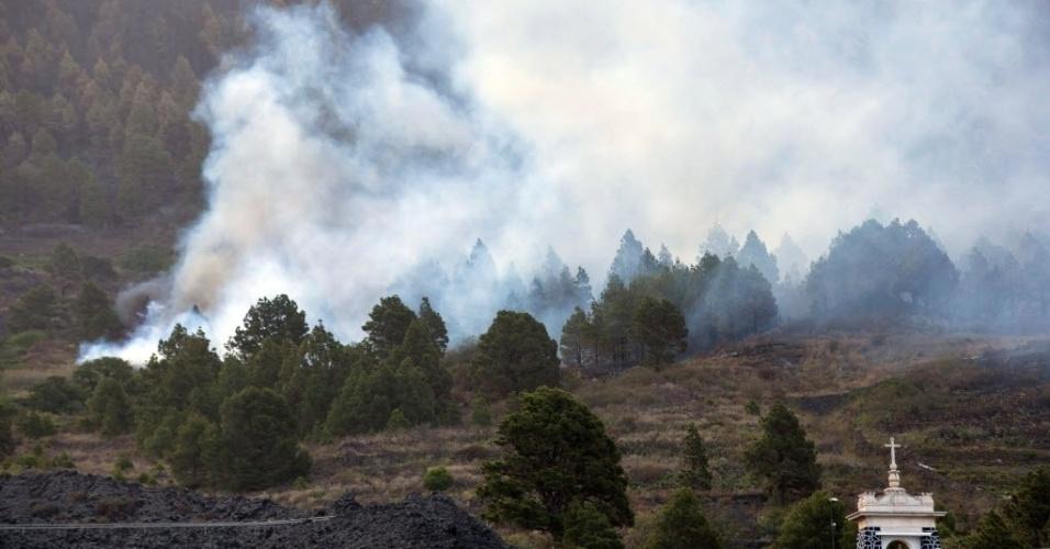 5.ago.2016 - Um incêndio florestal atingiu a iha de Las Palmas, na Espanha. Um agente florestal morreu e pelo menos 1800 pessoas precisaram deixar as casas como medida de segurança