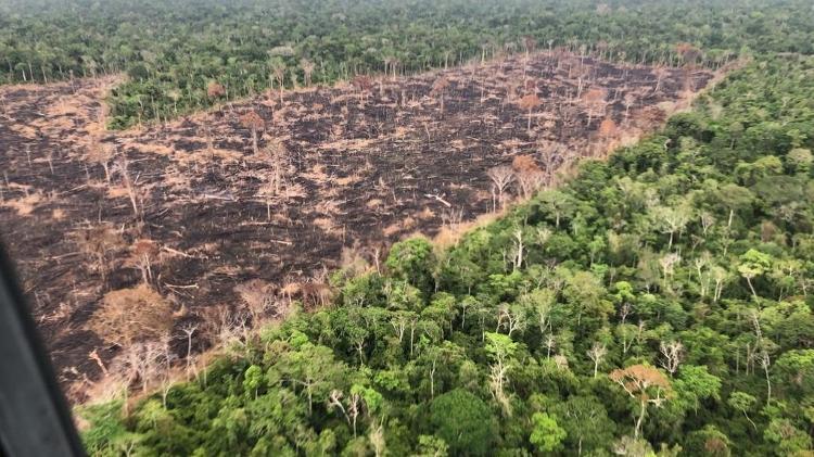 17.ago.2016 - Área de queimada e pasto em Rondônia, próxima à capital Porto Velho - Rogério Assis/Greenpeace