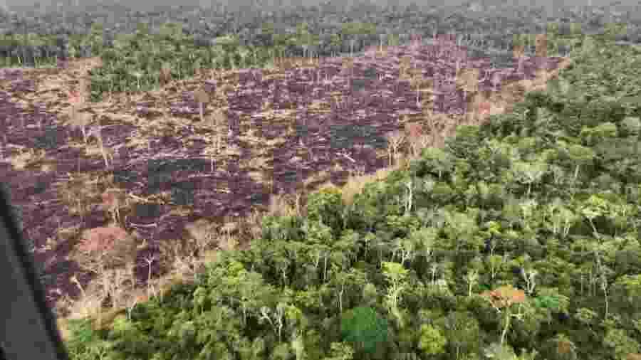 17.ago.2016 - Área de queimada e pasto em Rondônia, próxima a Porto Velho - Rogério Assis/Greenpeace