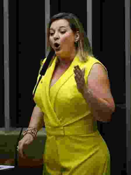 Joice Hasselmann (PSL-SP), então líder de governo, discursa na votação da Reforma da Previdência - Mateus Bonomi/Agif/Estadão Conteúdo