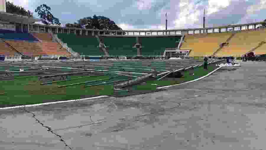 Estruturas em construção para criação de hospital no estádio do Pacaembu - Beatriz Oliveira/Allegra Pacaembu