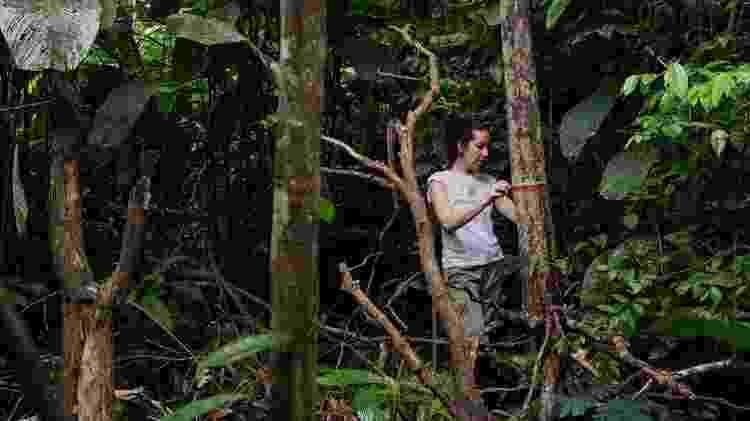 Autora principal do estudo, Erika Berenguer, monitora árvores em uma floresta amazônica queimada durante o El Niño de 2015 - Marizilda Cruppe/Rede Amazônia Sustentável - Marizilda Cruppe/Rede Amazônia Sustentável