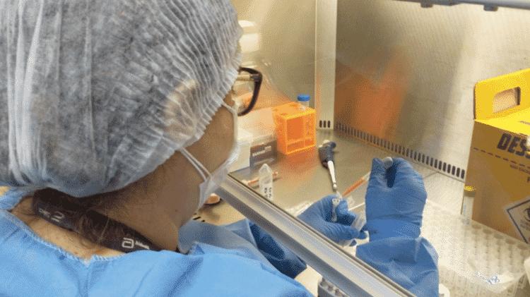 Monitoramento genômico da Secretaria de Estado de Saúde identifica nova variante da Covid-19 no estado do Rio de Janeiro - Secretaria de Estado de Saúde (SES-RJ) - Secretaria de Estado de Saúde (SES-RJ)