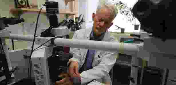 Dr. Hannes Vogel analisa lâminas de tecido cerebral em seu laboratório em Stanford, Califórnia - JIM WILSON/NYT