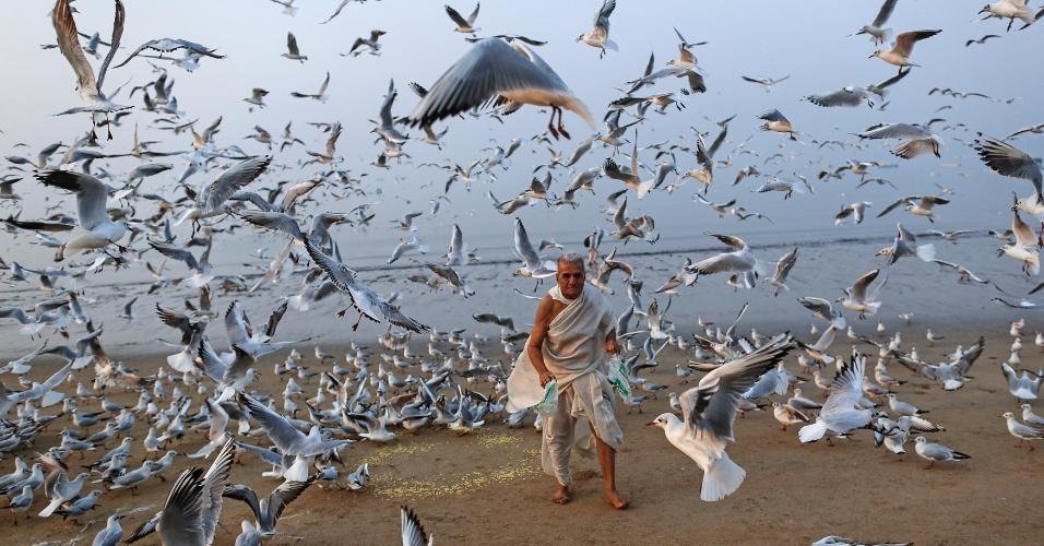 9.fev.2016 - Homem alimenta dezenas de gaivotas em praia de Mumbai, na Índia, banhada pelo mar Arábico
