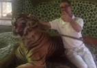 Para garantir fotos de turistas, tigre é maltratado em zoo da Tailândia - Reprodução