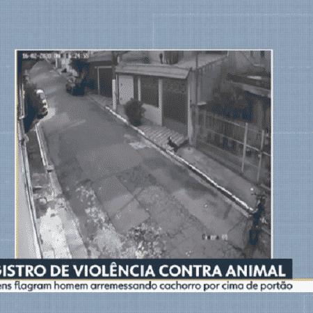 Maus tratos contra cachorro na ZL - Reprodução/Globoplay