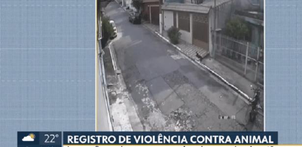 Maus tratos | Homem atira cachorro por cima do portão na zona leste de SP