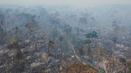 Foto feita por Edmar Barros em Lábrea, após queimadas na região - Edmar Barros