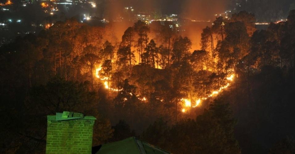 2.mai.2016 - Incêndio florestal atinge o norte de Shimla, no estado indiano de Himachal Prades. Os incêndios que atingem o país já varreram mais de 1.900 hectares de floresta
