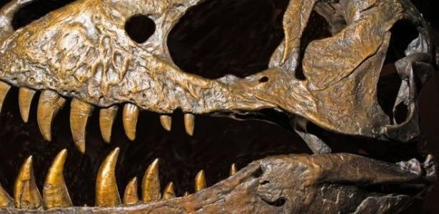 Os dinossauros mais salvagens e carnívoros, como o tiranossauro, foram reclassificados