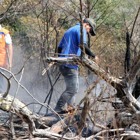 Área de Proteção Ambiental Municipal em Alter do Chão atinginda por incêndios em setembro - Jader Paes /Ag.Pará