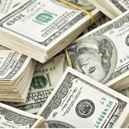 Saídas de dólares em 2020 no país supera entrada em US$ 27,923 bilhões, diz BC - Reprodução