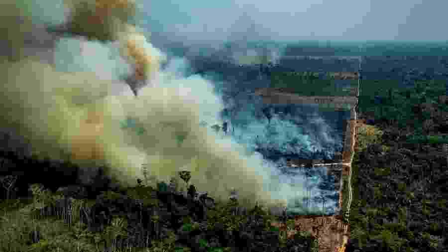 Desmatamento da Amazônia aumenta 85,3% em 2019, segundo Inpe - Reprodução/MOV
