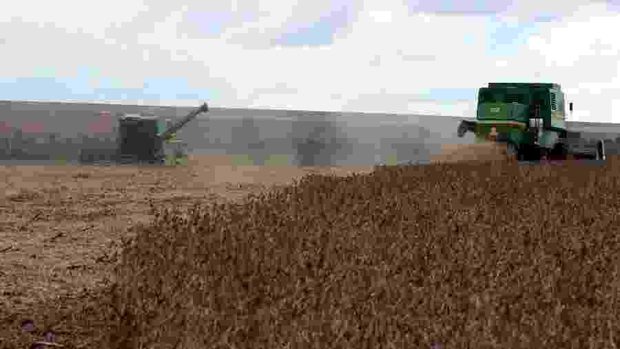 Soja brasileira perde vez para o cultivo americano, de preço inferior - Paulo Whitaker