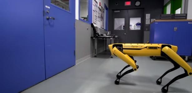 """Cão robô lembra episódio da série """"Black Mirror"""""""