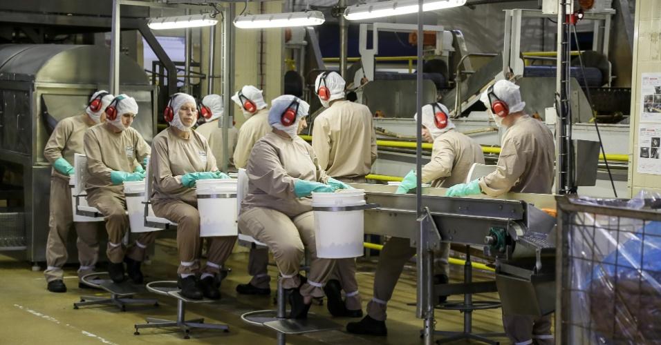 Funcionários limpam legumes na fábrica de papinhas