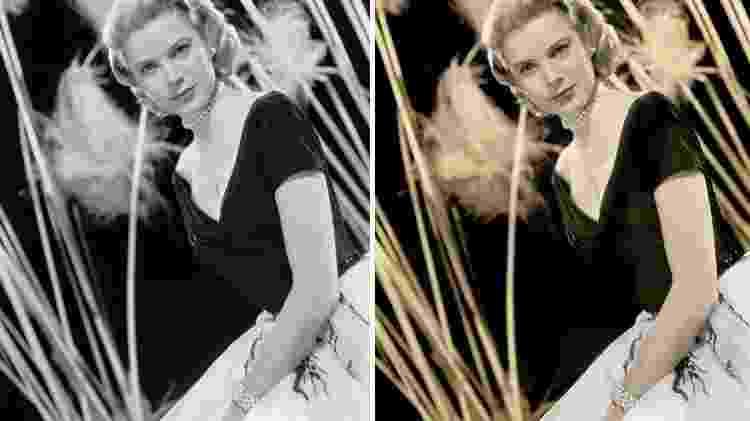 Grace Kelly - Reprodução/Bored Panda - Reprodução/Bored Panda