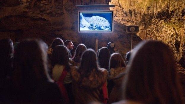 29.fev.2016 - Visitantes podem ver a fêmea por uma câmera infravermelha. O proteus é uma espécie de ícone na Eslovênia, onde aparecia em moedas antes da chegada do euro