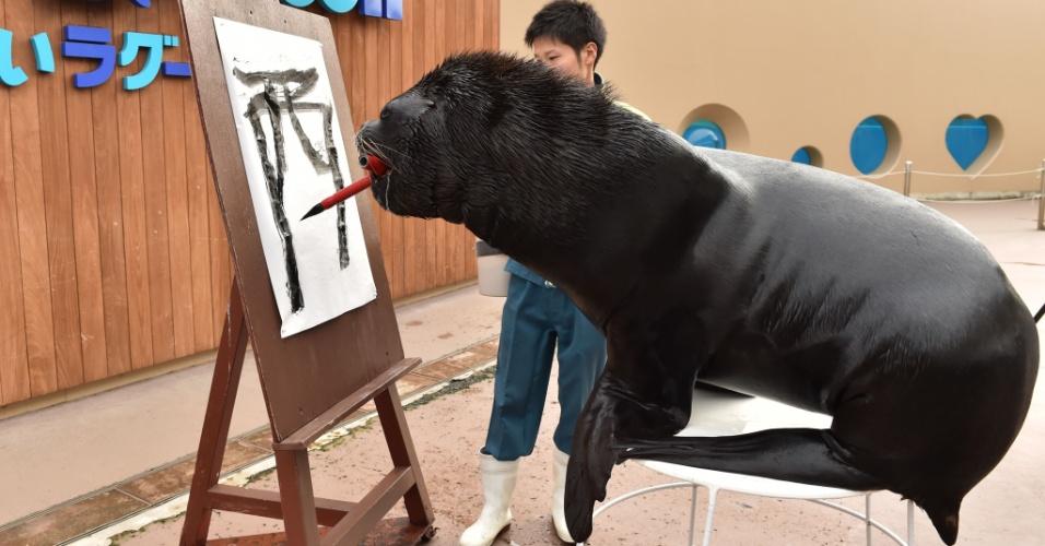 """26.dez.2016 - O leão-marinho 'Leo' de 14 anos participa de uma sessão de treinamento de caligrafia para aprender a escrever """"Galo"""" no aquário Hakkeijima Sea Paradise, em Yokohama, Tóquio.  Baseado no calendário lunar, 2017 será o ano do Galo"""