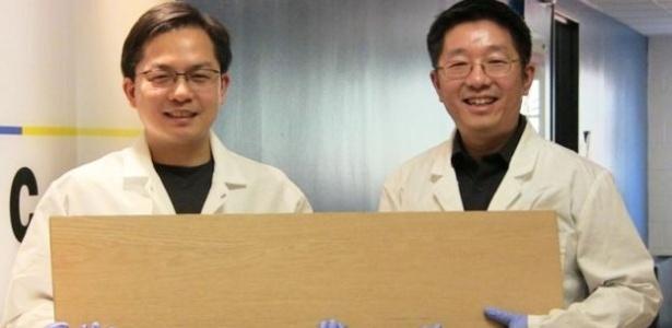Liangbing Hu e seu colega Teng Li mostrando a supermadeira; pesquisadores a testaram com projéteis semelhantes a balas de revólver