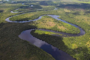 Chaves para entender o Pantanal (Foto: Carl de Souza/AFP)