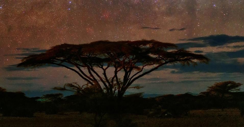 30.ago.2016 - A Via Láctea e Vênus iluminam o céu no Parque Nacional Samburu, no Quênia. Vênus é geralmente o planeta mais próximo da terra, mas Mercúrio, Saturno, Marte e Júpiter também podem ser vistos a olho nu