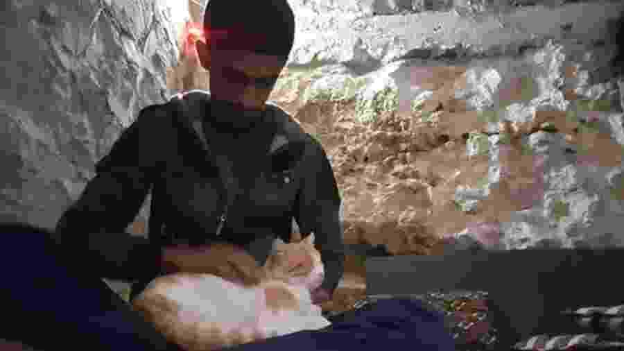 """""""É reconfortante quando os gatos estão por perto"""", diz Salah - BBC"""
